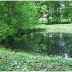 озеро Заньковецької